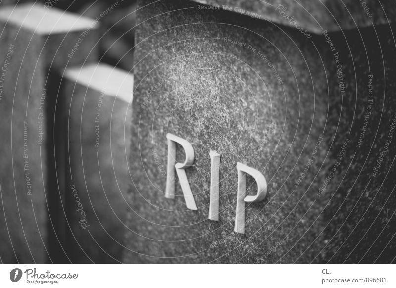 r.i.p. Traurigkeit Tod Stein Schriftzeichen Vergänglichkeit Trauer Friedhof Beerdigung Grabstein Grabinschrift