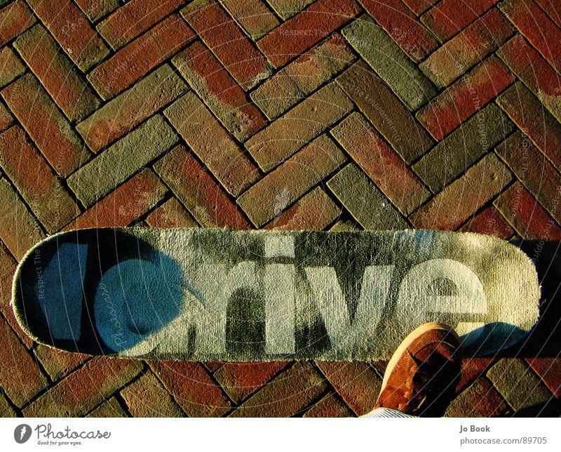 carpet skateboard Skateboarding Schuhe braun Bürgersteig Sonnenlicht fahren Lifestyle Teppich Sport Spielen shoe stone Kopfsteinpflaster drive Rolle fliegen
