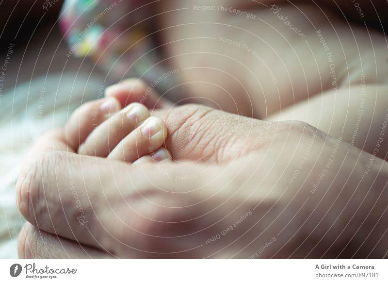 verbundenheit Mensch Baby Vater Erwachsene Hand 2 Liebe Identität Kindheit Kontakt Zusammenhalt trösten eng Zusammensein Mutterliebe Schutz festhalten