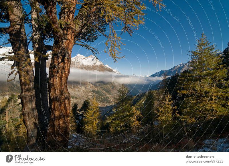 und der Berg ruft Natur Ferien & Urlaub & Reisen blau schön grün Sommer Landschaft ruhig Berge u. Gebirge Tourismus wandern Ausflug Alpen Wolkenloser Himmel Sommerurlaub