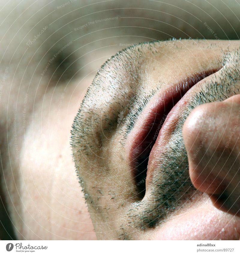 Einladung Mensch Mann schön lachen Haut maskulin Nase Lippen rein Bart Partnerschaft atmen fein Kinn verführerisch Rasieren