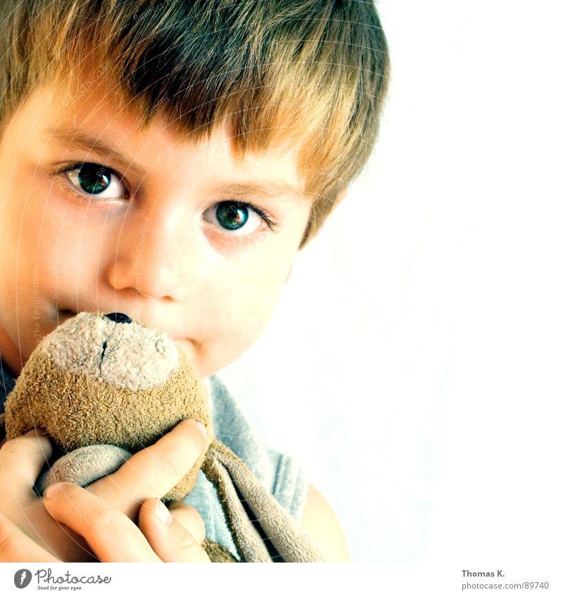 Freunde fürs Leben. Kind Auge Junge Hase & Kaninchen Kuscheln Stofftiere Zärtlichkeiten Junior