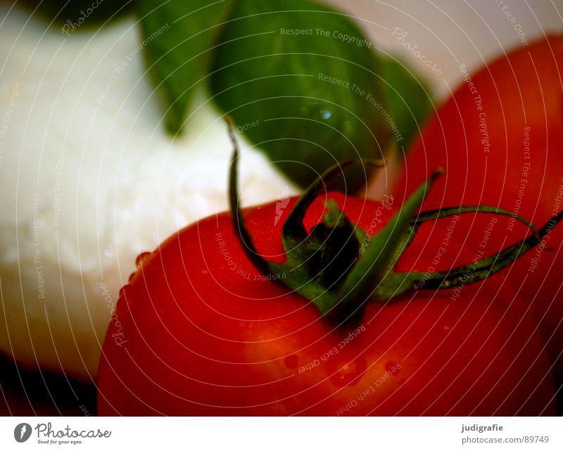 Abendessen grün rot Holz Lebensmittel Ernährung Italien Gemüse Stengel Holzbrett Halm Mahlzeit Tomate Salz Vegetarische Ernährung Basilikum