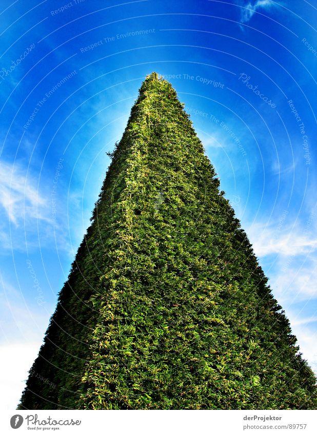 3d-Wiese weiß Wolken dreidimensional Sträucher Dreieck grün Wahrzeichen Denkmal Himmel blau Rasen Pyramide Kontrast Strukturen & Formen