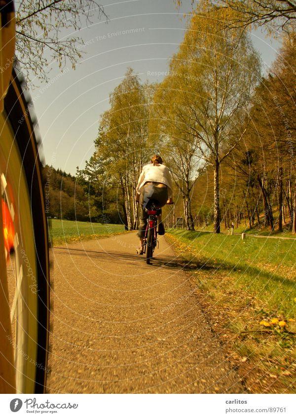 Sonntagsausflug 1 Fahrrad Ausflug Frühling Sommer Fahrradweg Allee Fahrradtour Luft Freizeit & Hobby Ausgleichssport Klima Sonnenlicht Schönes Wetter