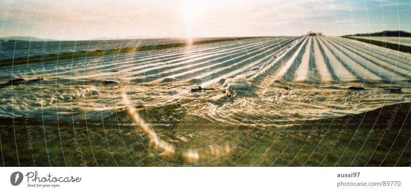 Herbstfeld I Arbeit & Erwerbstätigkeit Herbst Feld groß Landwirtschaft Abdeckung