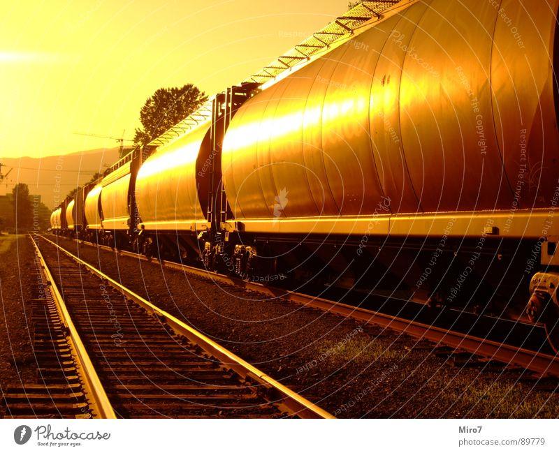 Lange Reise Eisenbahn Gleise Kanada Sonne Güterzug Güterverkehr & Logistik Eisenbahnwaggon Zentralperspektive Sonnenlicht Warmes Licht Warme Farbe lang