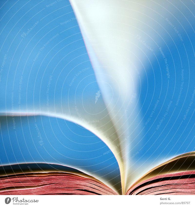 let it flow blau weiß rot Zusammensein hell rosa offen Schriftzeichen Wind Buch geschlossen lesen Buchstaben Bildung Typographie Handwerk