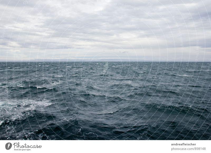Herzhaft Rau Tourismus Ausflug Abenteuer Ferne Freiheit Kreuzfahrt Sommer Meer Wellen Wassersport Umwelt Natur Himmel Wolken Horizont Herbst schlechtes Wetter