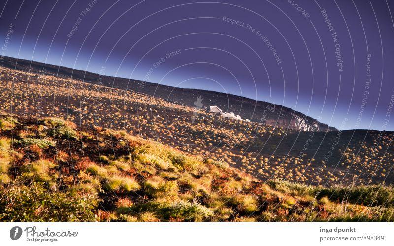 Basalt rockt! Natur Ferien & Urlaub & Reisen Pflanze Landschaft Umwelt Berge u. Gebirge Herbst Wetter Erde Tourismus Sträucher Klima Schönes Wetter Urelemente