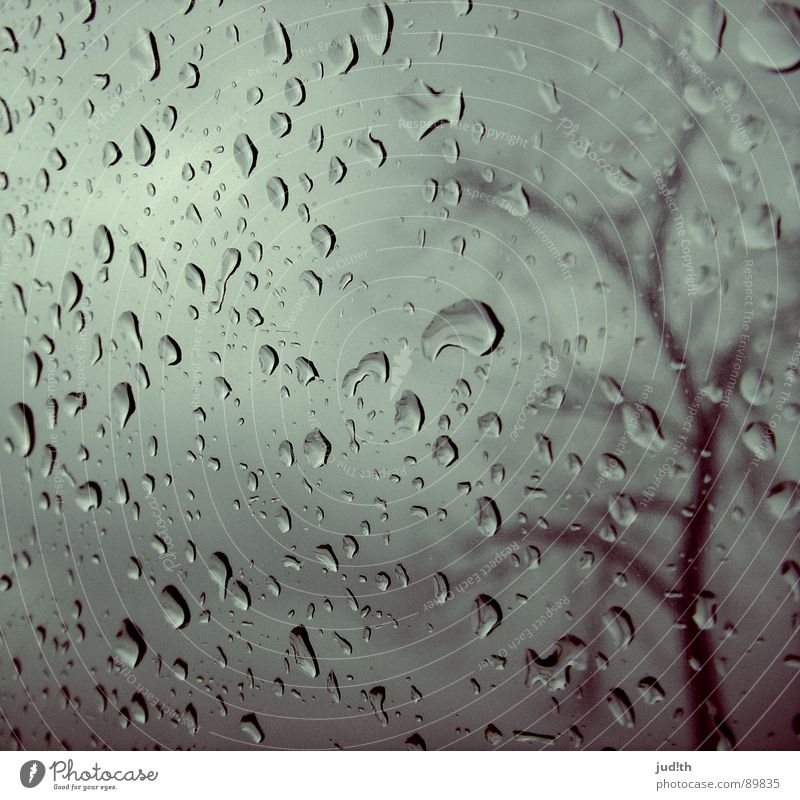 Regen Wasser Himmel Baum Wolken Einsamkeit Herbst Fenster grau Traurigkeit Glas Wetter Wassertropfen nass Trauer Ast