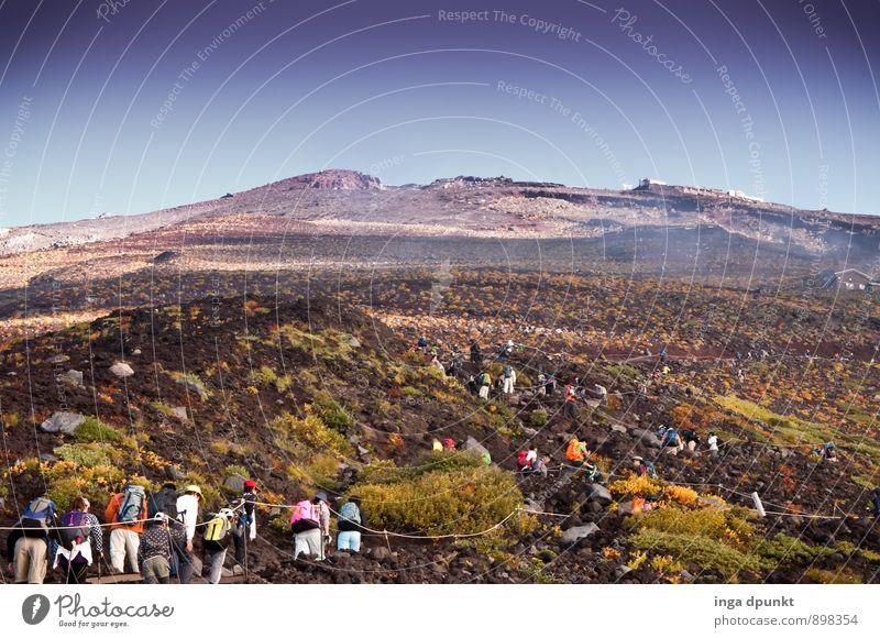 Sonntags muss man anstehen! Sport Klettern Bergsteigen Außenaufnahme Seilschaft Gipfel wandern Umwelt Natur Landschaft Herbst Pflanze Sträucher Berge u. Gebirge