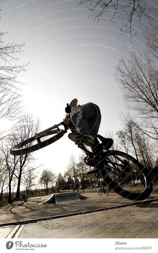 up in the sky V Himmel springen fahren Fahrrad Mountainbike Aktion Sport Stil Jugendliche Physik Sommer Baum Sportpark Park Vergnügungspark stehen Zufriedenheit