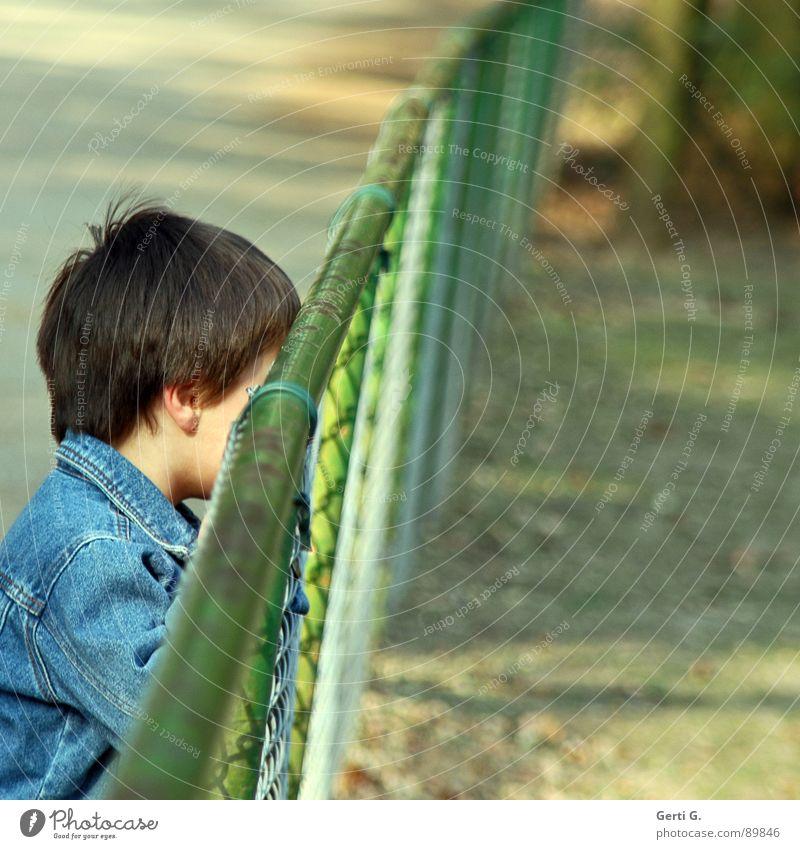 undercover aussperren abgesondert Kind Mensch Jeansjacke Zaun Gitter Grenze Barriere stoppen diagonal Gehege Zoo unsichtbar verstecken rückwärts gefangen grün