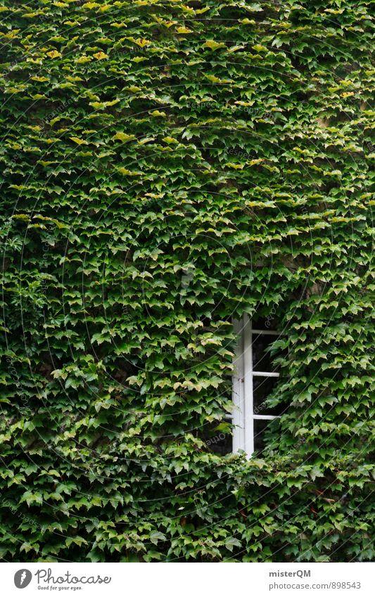 Verwachsen. Kunst ästhetisch Zufriedenheit Fenster Fensterladen Fensterscheibe Fensterbrett Fensterblick Fensterrahmen Fensterkreuz Fensterfront grün Fassade