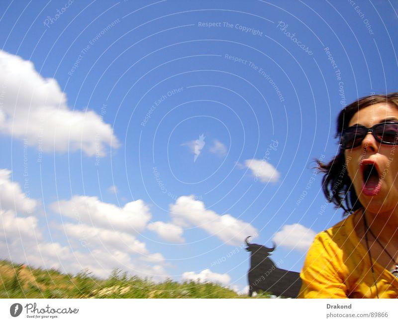 Running Himmel Feld Bulle Frau Wolken Field sky bull woman clouds to traverse fear glasses mouth um zu überqueren um sich Brille Mund zu fürchten