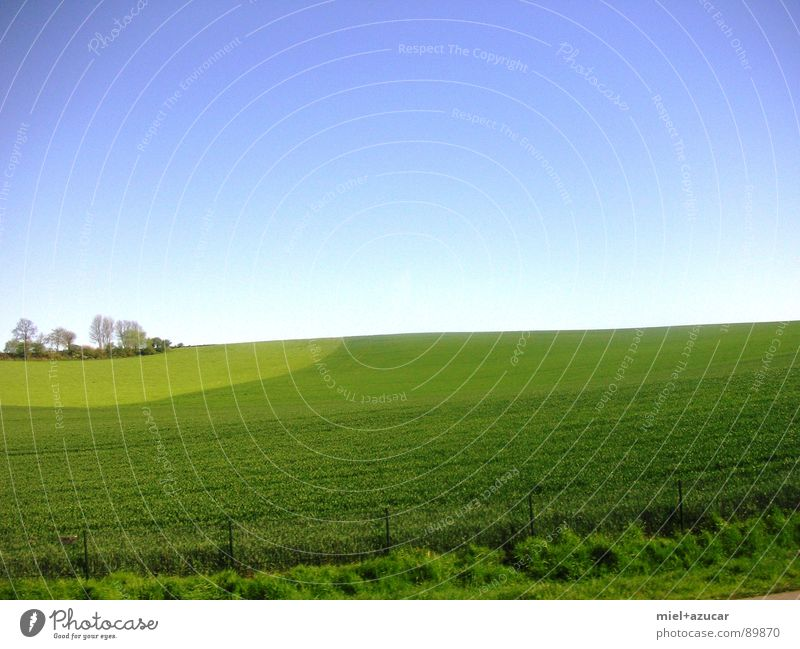 horizont blau grün Sommer Farbe Freude Landschaft Ferne Frühling Freiheit Gesundheit Idylle positiv Optimismus