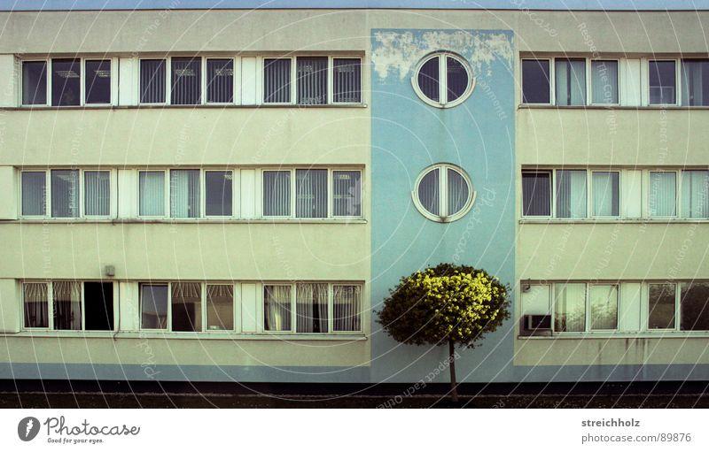 Design like yesterday alt Baum grün Pflanze Haus Wolken Wiese Büro Fenster Traurigkeit Park Gebäude Wasserfahrzeug Angst Deutschland