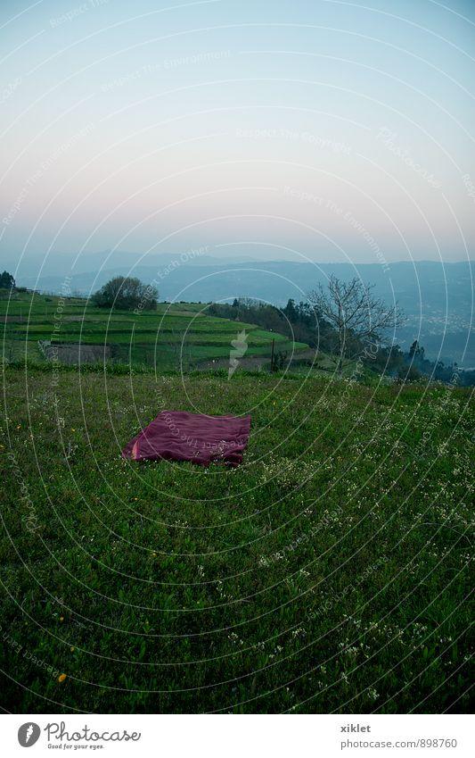 Himmel blau schön grün Sommer Erholung Einsamkeit ruhig Freude Traurigkeit Gras natürlich Freiheit Horizont liegen träumen