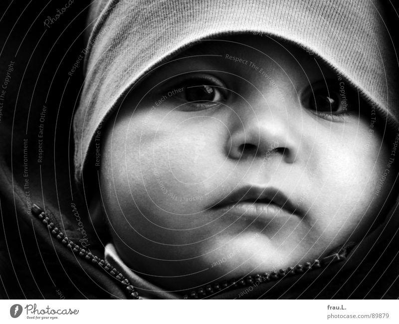 Noah Mensch Kind Gesicht Glück Denken Baby beobachten Konzentration Kleinkind Geborgenheit ernst Traumprinz