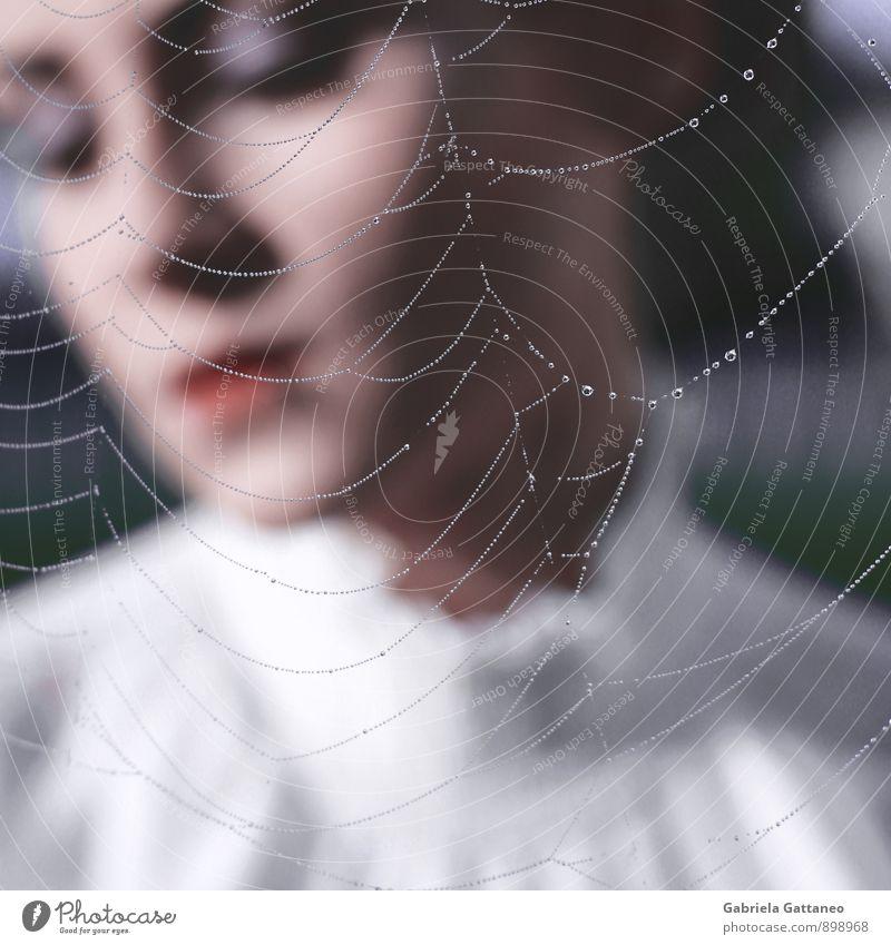 the breath II feminin 1 Mensch 18-30 Jahre Jugendliche Erwachsene genießen ruhig Spinnennetz Netz Tau gefangen verstecken Romantik Farbfoto Außenaufnahme