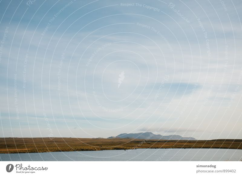 I'm in Iceland. Natur Ferien & Urlaub & Reisen Pflanze Erholung Landschaft ruhig Wolken Berge u. Gebirge Gras See Idylle Schönes Wetter Hügel Island