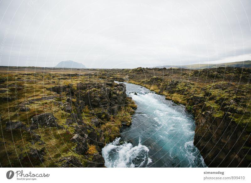 I'm in Iceland. Natur Ferien & Urlaub & Reisen blau grün Wasser Landschaft Wolken kalt Umwelt Gras Felsen Horizont Idylle Sträucher Urelemente Sauberkeit