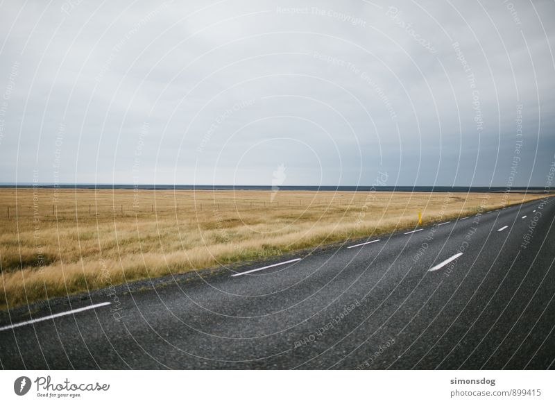 I'm in Iceland. Natur Ferien & Urlaub & Reisen Landschaft Wolken Straße Wiese Gras Freiheit Horizont fahren Asphalt Verkehrswege Island schlechtes Wetter