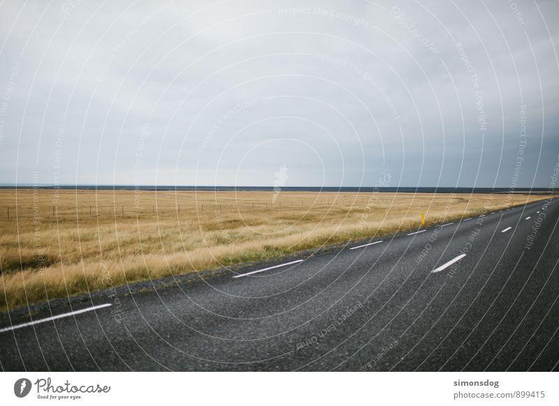 I'm in Iceland. Natur Ferien & Urlaub & Reisen Landschaft Wolken Straße Wiese Gras Freiheit Horizont fahren Asphalt Verkehrswege Island schlechtes Wetter geradeaus