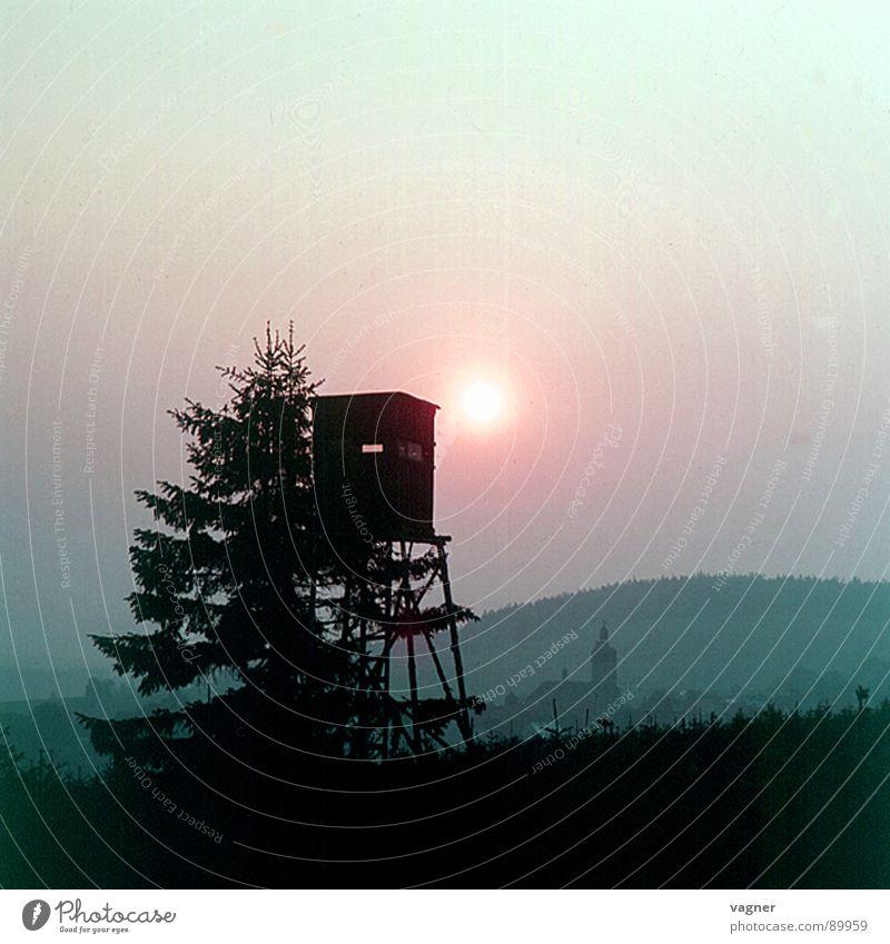Die Jagd Wald Herbst Freizeit & Hobby Hochsitz Brunft