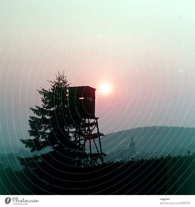 Die Jagd Wald Herbst Freizeit & Hobby Jagd Hochsitz Brunft