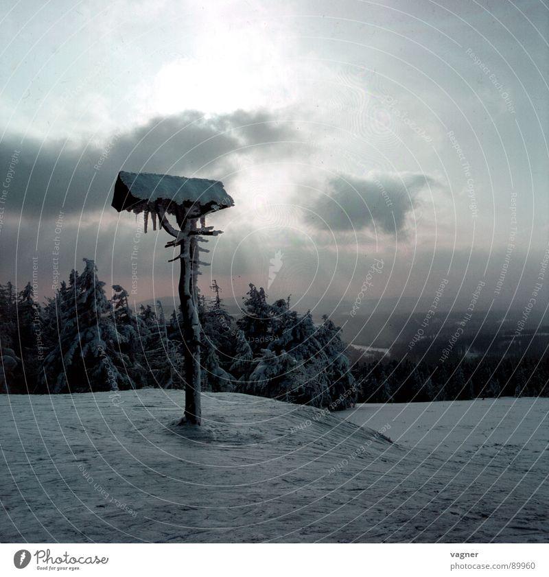 Wegweiser Sonne Winter Wolken Wald Schnee Berge u. Gebirge Hinweisschild