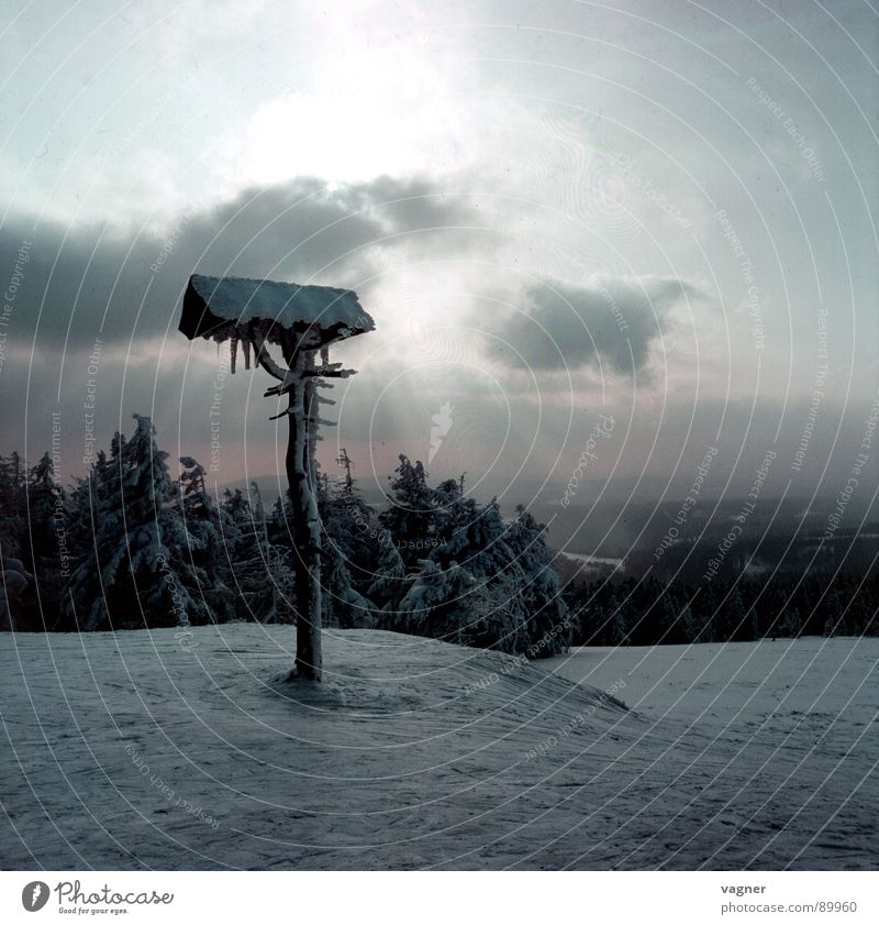 Wegweiser Winter Wald Wolken Berge u. Gebirge Hinweisschild Schnee Abend Sonne