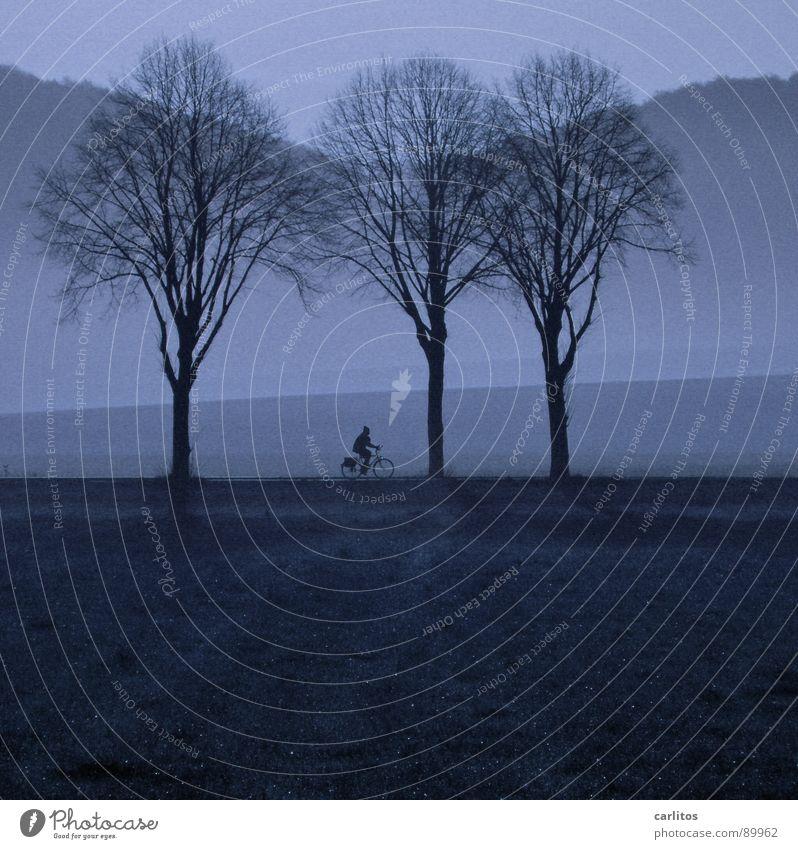 Feierabend - zett radelt heim Mensch Baum Landschaft Berge u. Gebirge Fahrrad Nebel Hügel Abenddämmerung Fahrradfahren Allee unterwegs ländlich Landstraße