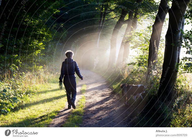 Hunderunde am Morgen Mensch Frau grün Einsamkeit ruhig schwarz Wald Erwachsene Bewegung feminin Wege & Pfade Tod natürlich gehen träumen
