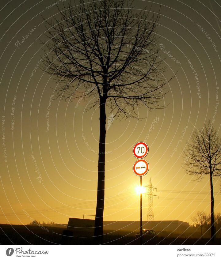 Radarkontrolle, selbstgebaut ... Baum Schilder & Markierungen Punkt Wut Strommast Ärger Verkehrsschild Landstraße Schleswig-Holstein Morgennebel Flensburg