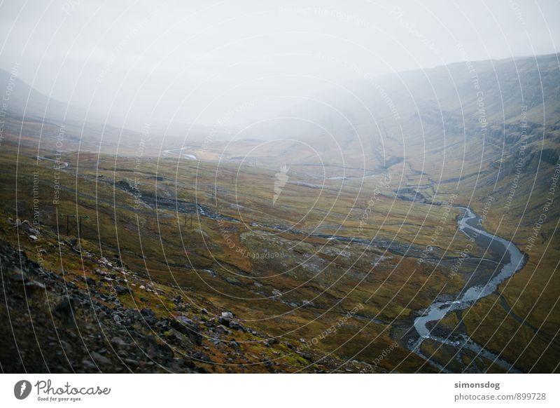I'm in Iceland. Natur Landschaft Wolken Horizont Sträucher Moos Bach Fluss Ferien & Urlaub & Reisen Island Tal Talblick Aussicht Flußbett Dunst Nebel