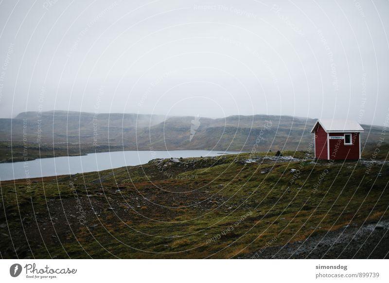 I'm in Iceland. Ferien & Urlaub & Reisen Einsamkeit Landschaft Wolken Haus Herbst See Aussicht Regenwasser Hütte Island Ferienhaus Moosteppich