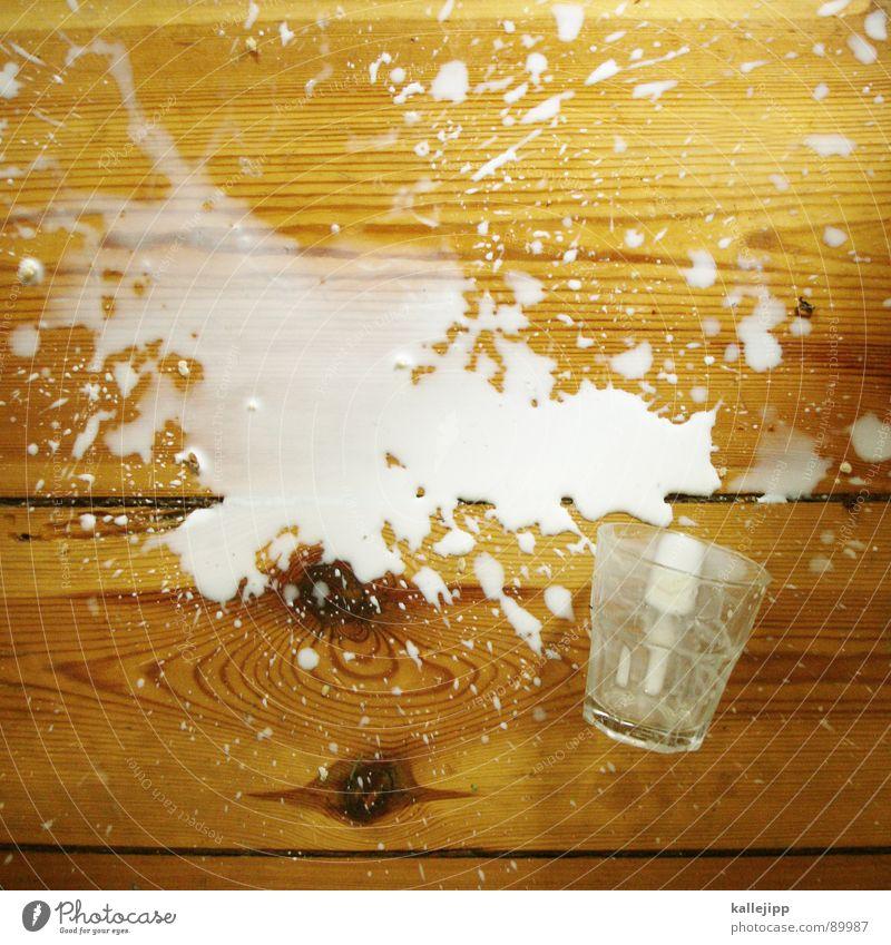 menschliches versagen Milch Behälter u. Gefäße Tanzfläche Bodenbelag Holz Parkett Schiffsplanken Missgeschick Unfall Scherbe klecksen weiß Lebensmittel