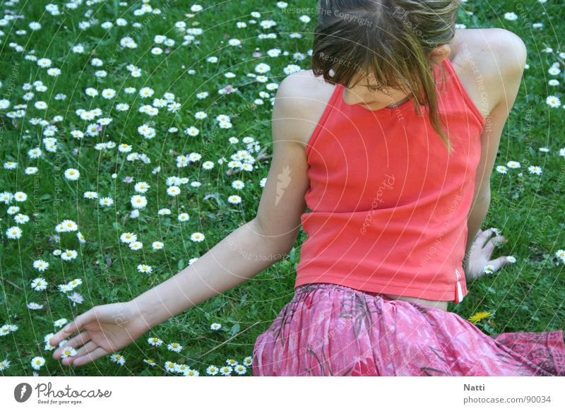 Blumenwiese Kind grün Sommer Freude Wiese Wärme Physik