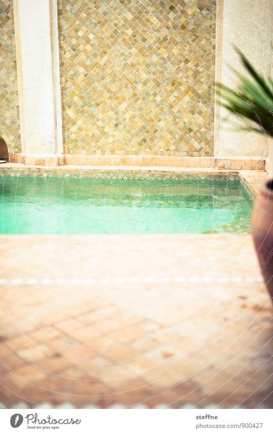 Abkühlung Wasser Sonne Sommer Schönes Wetter Wärme Marrakesch Marokko heiß Arabien Mosaik Schwimmbad Schwimmen & Baden kühlen nass Farbfoto Menschenleer