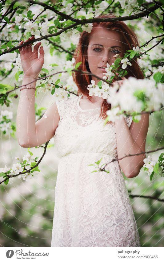 springtime II Mensch feminin Junge Frau Jugendliche Erwachsene Körper 1 18-30 Jahre Natur Landschaft Pflanze Frühling Sommer Schönes Wetter Baum Grünpflanze