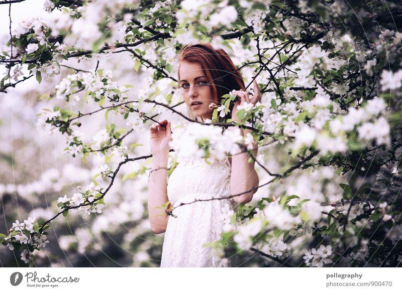 springtime III Mensch Frau Natur Jugendliche Pflanze Sommer Junge Frau Baum Landschaft Blume 18-30 Jahre Erwachsene Leben Gefühle Frühling Wiese
