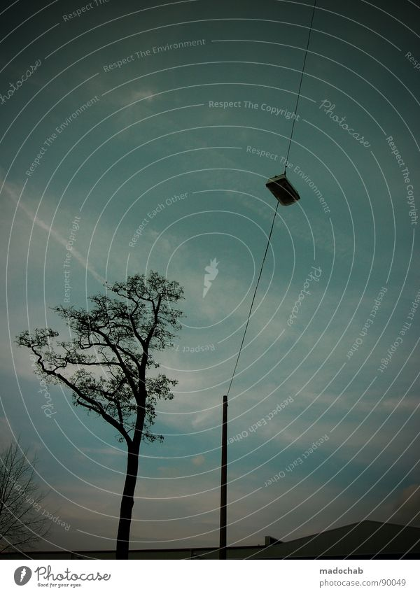 ... ABER NIX ANSTRENGENDES Himmel Baum blau Lampe Horizont Idylle Laterne Zweig