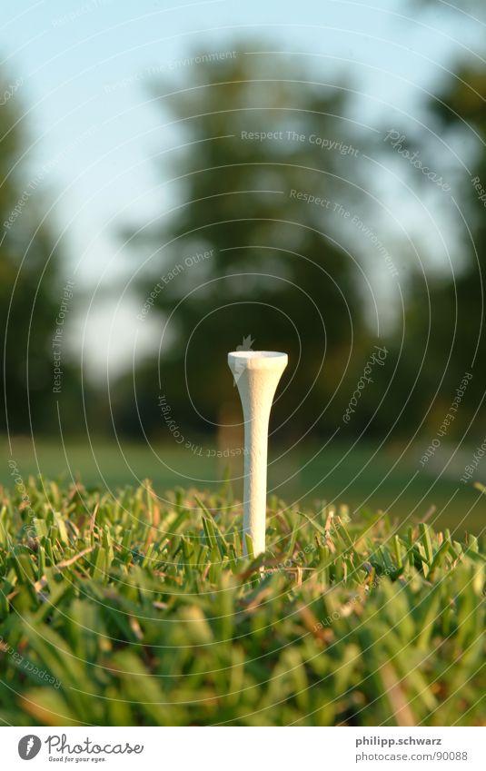 The Golftee grün Wiese Spielen Gras Tee Golfplatz Ballsport