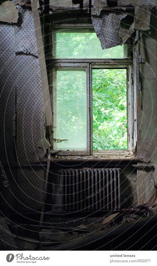DR# Grüne Aussicht Kunst Kunstwerk ästhetisch Fenster Heizkörper Tapete grün Fensterladen Fensterscheibe Fensterbrett Fensterblick Fensterrahmen Fensterkreuz