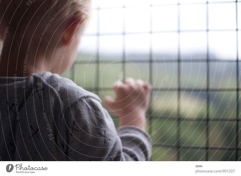 sehnsucht Mensch Kind Kleinkind Junge Kindheit Leben Ohr Rücken Hand 1 3-8 Jahre Pullover blond kurzhaarig beobachten Blick geduldig ruhig Neugier Interesse