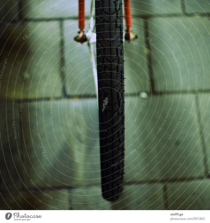 Profilbild Ferien & Urlaub & Reisen alt Stadt dunkel Straße Bewegung Wege & Pfade Fahrrad Ausflug rund Fahrradfahren retro Abenteuer Fahrradtour Verkehrswege