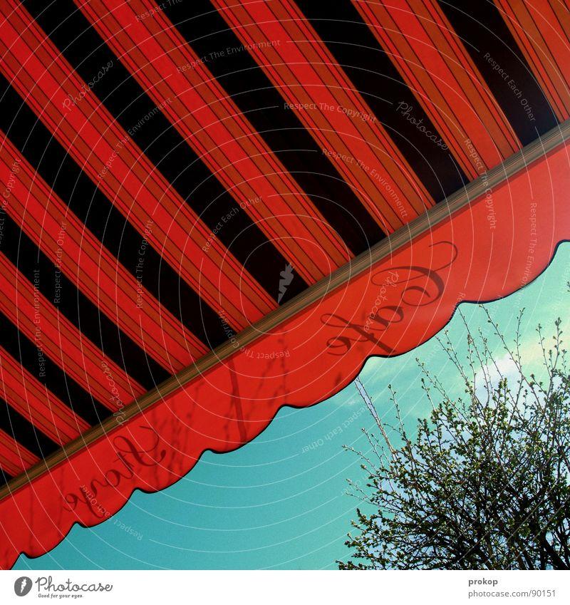 Café Café Sommer Markise Wellen Streifen Kaffeetrinken Milchkaffee Schönes Wetter genießen Baum rot Freizeit & Hobby Sonnenbad Restaurant Gastronomie diagonal
