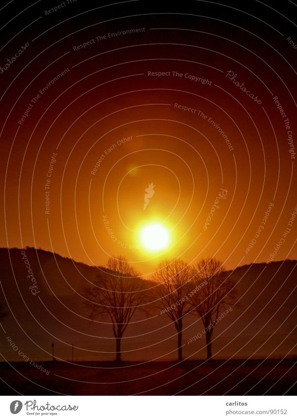 Klimawandel Ferien & Urlaub & Reisen Sommer Baum rot Berge u. Gebirge Wärme orange Wetter Nebel Klima Hügel heiß Physik Abenddämmerung Süden Klimawandel